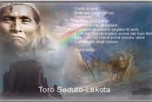 saggezza dei nativi
