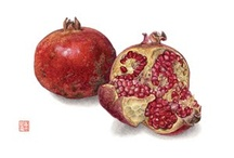 Pomegranates / by Ariel Dawn