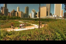 Fun things to do in Chicago! / by Anne Endres