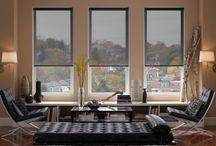 Window Treatments: Solar Screen Shades