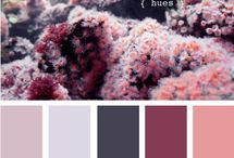 Colors that inspire / by Cassie Webber