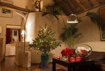 Christmas Holiday Cottages