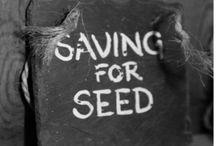 Gardening, seeds