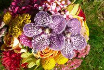 Bridal Bouquet Inspirations