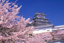 Japon : beaux paysages / Découvrez les plus beaux paysages du Japon.