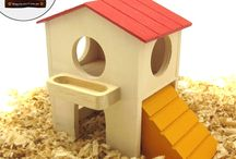 indoor pick your paint dog houses