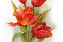 акварели цветы