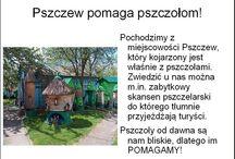 Gmina Pszczew Akademie Przyjaciół Pszczół