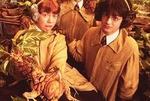 Harry Potter <3 / by Monica