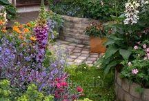 Garden Paul
