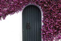 KÉPEK-fekete,fehér,lila