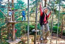 Go Ape! Zip Line & Tree Top Adventure / Go Ape is the world's leading provider of zip line & treetop adventure course experiences. Join us for zip lines, high ropes, and awesome obstacles! / by Montgomery County Tourism