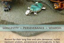Wisdom turtles