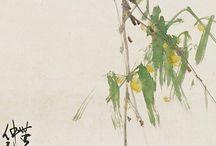 Zhao Shao Ang
