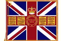 Regimental Flags