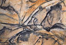 pitture parietali
