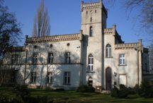 Wilcza - Pałac