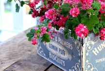 fleurs, bouquets,
