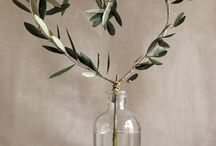 The Olive | Indoor & Outdoor / Ideas for using the olive plant or olive imagery in anything from home decor to cake decorations and tatoos!
