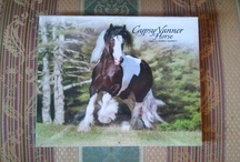 """Giveaway! / What you can win:  The 2013 Gypsy Vanner Horse Calendar photographed by the World Renowned Mark J. Barrett famous for his equestrian photography!  How to Win it: Follow us on FaceBook, Pintrest, and Twitter.  Go to our website www.ggvanner.com for our easy to press """"follow us"""" buttons.    On December 26th we will choose a winner at random."""