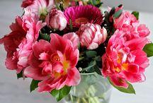Kukkaterapiaa / Kauniit kukat, hyvä fiilis