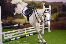 model horse ideas