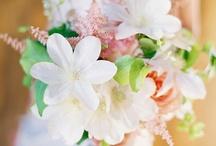 flower━nature