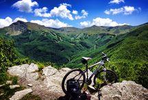 Excursions & Bike Tour