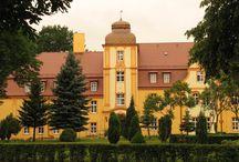 Brzeziny - Pałac