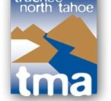 Lake Tahoe Vaca