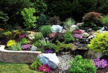 Zahrada skalka