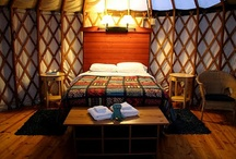 Envisioning Yurt Love / by Andrea Bella Terra