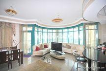 Amazing Property