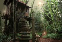 treehouses / by Chris Jarred