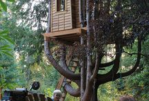 A tree house for the kids