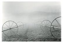 """Artista: Roman Loranc /  """"Creo en mí mismo como un fotógrafo regional,"""" Loranc dice, """"pero eso no significa que la fotografía no puede ser entendida más allá de la región. En este momento la gente de todo Estados Unidos indicarme que el regionalismo, nacido de un archivo adjunto informado, tiene atractivo universal """"."""