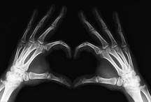 It's an x-ray thing / by Meghan Troyer