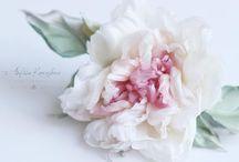 Flower asesorise