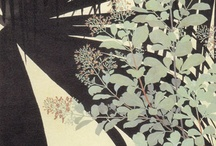 The world of Isson Tanaka / 田中一村の作品  a Japanese Nihonga painter noted for his flower-and-bird paintings of the Amami Islands.1908-1977