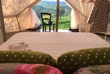 The Lazy Olive Glamping / 10 gypsy chic tents. Private bathroom, antique furniture and air con. Breathtaking views, boutique vineyard, organic olive grove and vegetable garden at your disposal. ,Common Casetta with kitchen and lounge area. Trequanda - Siena - Tuscany