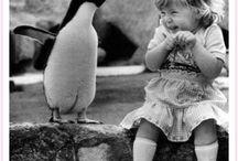 Crianças e Animais ❤