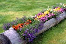 Garden ideas / by Fred n Diane Mullins