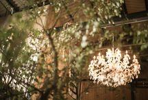 wedding idea* / アイデア / 結婚式でやってみたくなる、ウェルカムツリー、ドライフラワーアイテム、キャンドル、フォトブース、ウェルカムスペースなどのトレンドやアイデアををお届けします♡