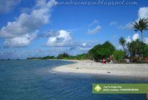 Trip To Pulau Pari [operator : Paradisonesia] / Trip To Pulau Pari August 10 - 11, 2013 Link : http://triptr.us/tL