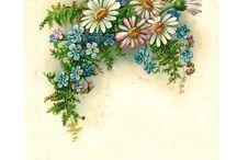 λουλουδια  2