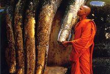 mnisi ▪ monks