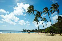Waimea Bay Beach Park / 透明度抜群のエメラルドグリーンが広がる、地元の方お気に入りのビーチ。 のんびりと海水浴が楽しめます!