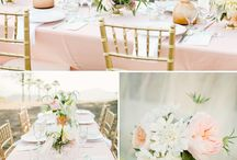 Wedding and Events / by Molly Johnston