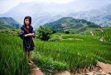 montagne du vietnam
