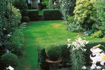 Garden - Kert
